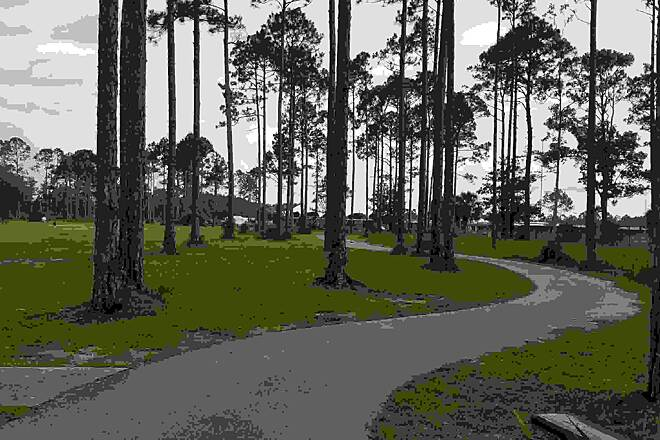 Port City Trail Curves in the trail
