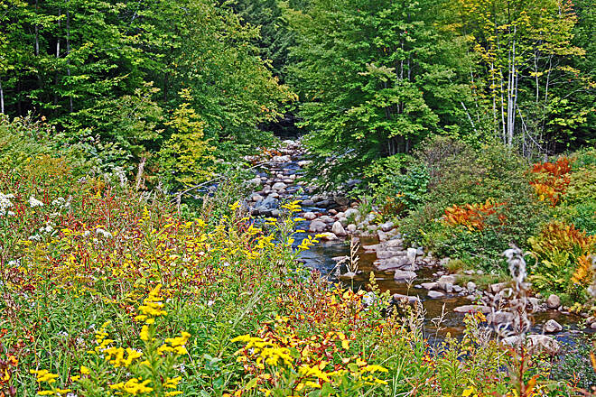 Presidential Rail Trail Moose River A section of Moose River seen on the Presidential Range Rail Trail in Gorham, NH.