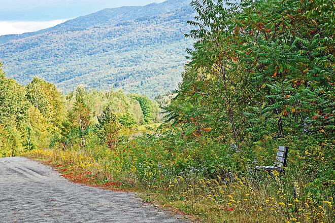 Presidential Rail Trail A Place of Respite  A beautiful place to sit and enjoy your surroundings on the rail trial in Gorham, NH.