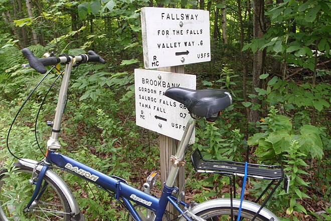 Presidential Rail Trail Trails lead up to Madison MTn  from Rail trail