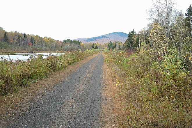 Presidential Rail Trail beaver pond Very scenic section of the trail, with beaver pond nearby.