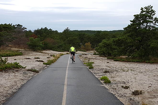 Province Lands Bike Trail Province Lands Photo by Leeann Sinpatanasakul