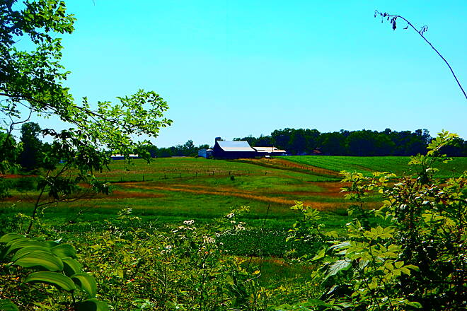 Pumpkinvine Nature Trail Could be an Amish farm. This is definitely a farm country trail. Great scenery. 6-25-16