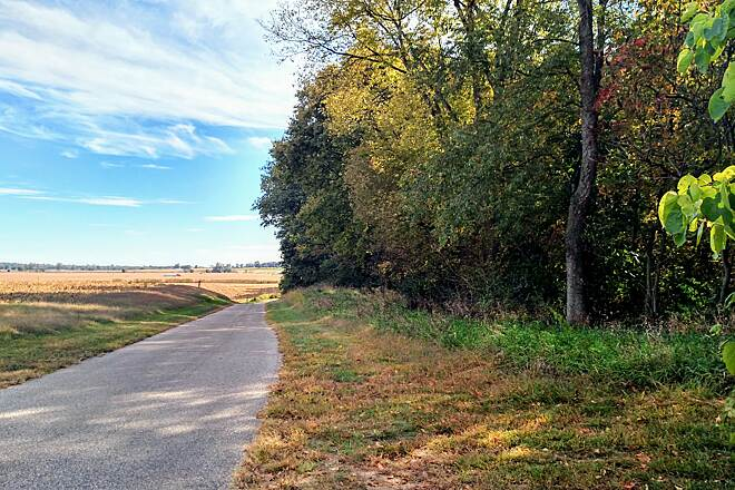 Pumpkinvine Nature Trail In Amish land Next to a field of freshly harvested corn.
