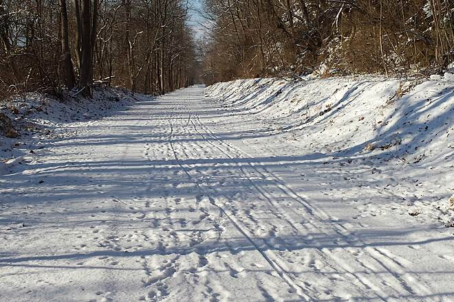 Radnor Trail D & L trail Palmer Township A light snow covers the D & L trail in Palmer Township PA 1/7/2015