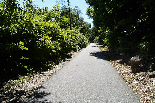 Radnor Trail Radnor Trail One of the few empty stretches of the trail on the Sat. before July 4, 2014.