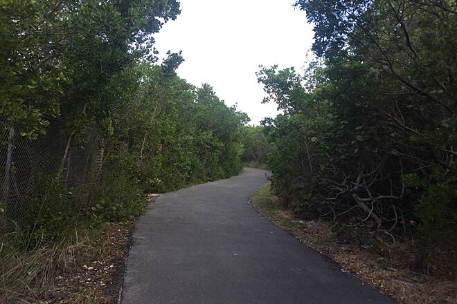 Rickenbacker Trail Skatingg Rickenbacker Trail - South FL