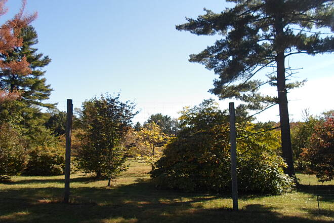 Ridley Creek State Park Trail Ridley Creek State Park Trail View of the Tyler Arboretum from the Forge Road section of trail.