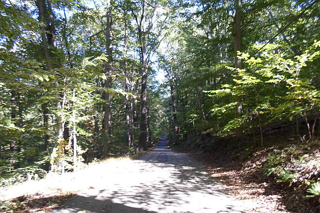 Ridley Creek State Park Trail Ridley Creek State Park Trail Looking down the steep hill near the eastern end of Forge Road.