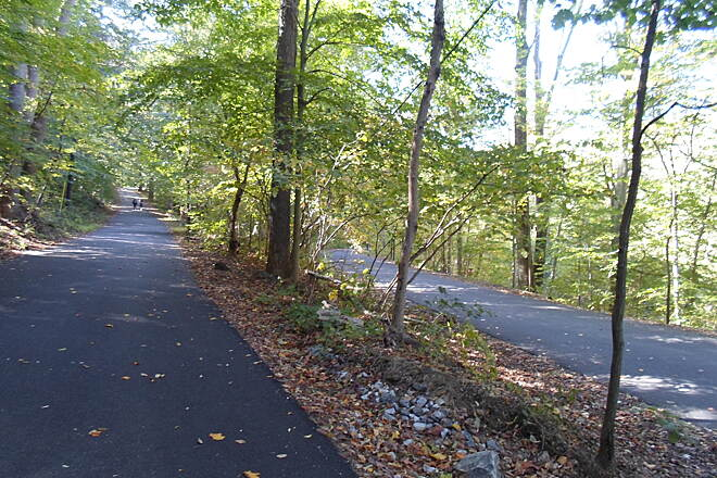 Ridley Creek State Park Trail Ridley Creek State Park Trail Fork in the trail; Forge Road climbs the hill on the left, headed southwest, while Old Sycamore Road follows Ridley Creek, on the right.