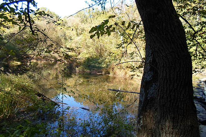 Ridley Creek State Park Trail Ridley Creek State Park Trail Reflective waters of Ridley Creek, taken near the park's east end.