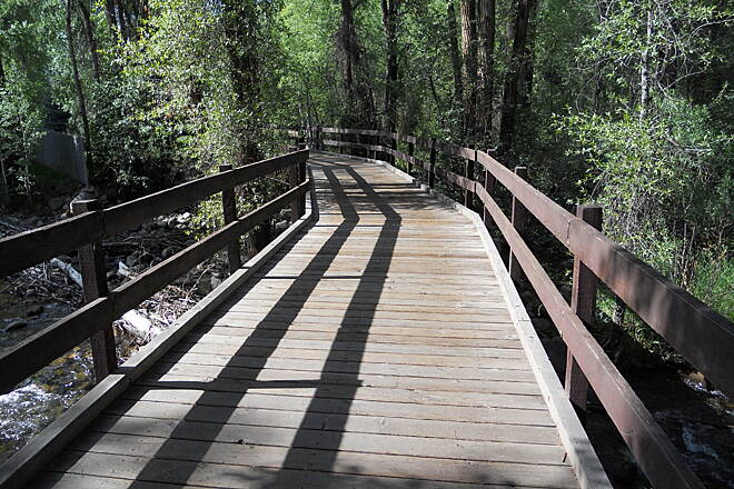 Rio Grande Trail Boardwalk near start of trail Early Stream crossing
