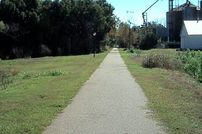 Robertsdale Trail South of Downtown South side of town looking south. The south side of the trail has a traditional rail-trail look.