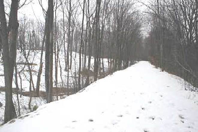 Samuel G. Fisher Mount Ivy Environmental Park Samuel G. Fisher Rail Trail A snow covered trail for cross country skiing.