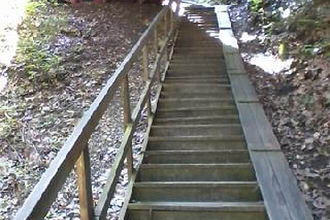 Sandy Creek Trail Stairs to Allegheny River Trai For now (2015), these stairs under the bridge are the only way to connect to the Allegheny River trail