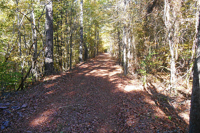 Savannah Valley Railroad Trail TrailLink.2 Typical trail section.