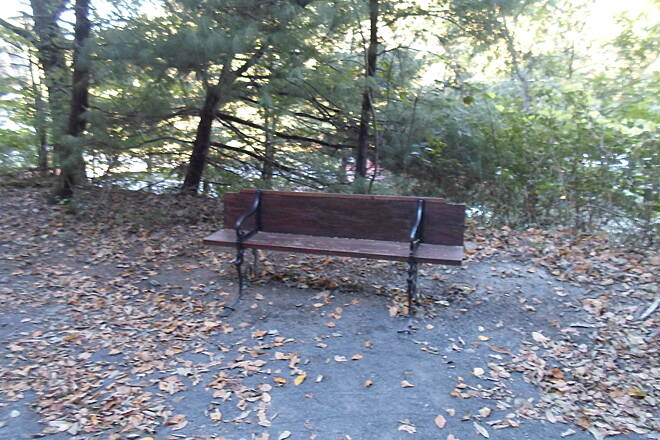 Schuylkill River Trail Bartram Trail Bench at the junction of the Bartram and Appalachian trails outside Port Clinton. Taken Sept. 2015.