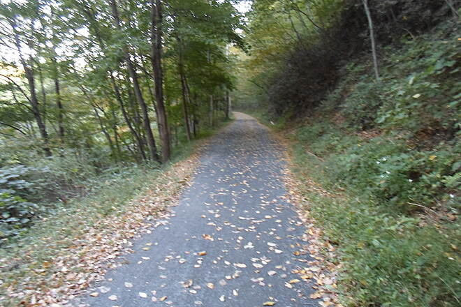 Schuylkill River Trail Bartram Trail Passing through the woods southeast of Port Clinton.