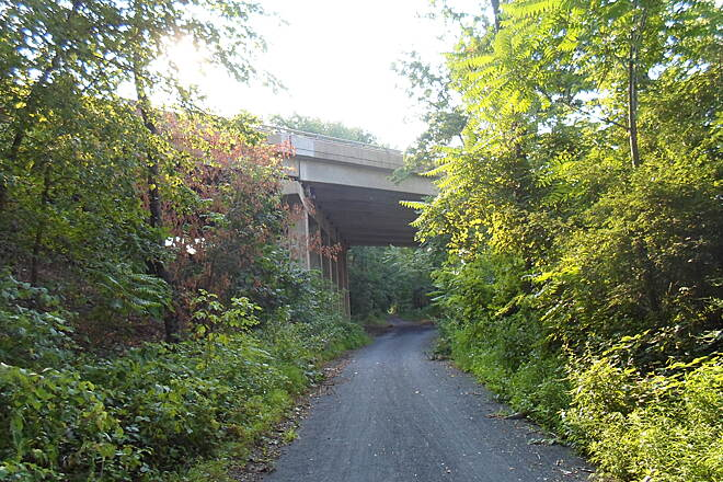 Schuylkill River Trail Thun Trail Passing under Route 422 near Morlattan Village. Taken August 2014.