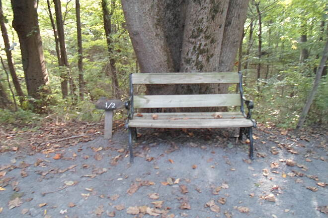 Schuylkill River Trail Bartram Trail Bench on the section north of the Kernsville Dam trailhead. Taken Sept. 2014.