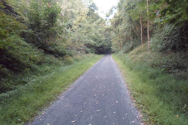 Schuylkill River Trail Bartram Trail Passing through a clearing south of Port Clinton. Taken Aug. 2014.