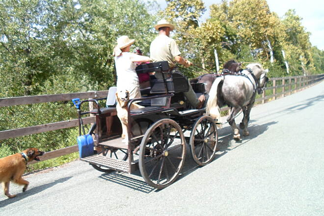 Schuylkill River Trail Schuylkill River Trail This couple, along with their dogs, were enjoying a late summer ride along the trail on their horse carriage. Taken Sept. 2014.