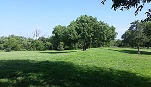 Sedgwick County Zoo Park Path