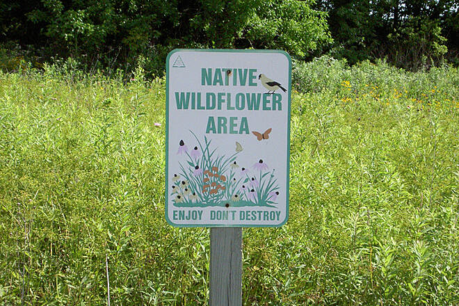 Shaker Trace Trail Outer Loop June 2015 Wildflower field sign