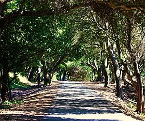 San Jose California Trails Trail Maps Traillink