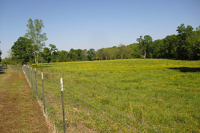 Silver Comet Trail Field of wild flowers A pasture full of April wildflowers between Cedartown and Alabama.