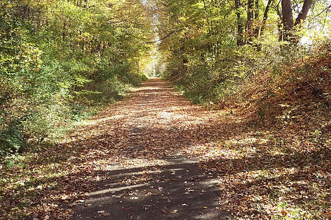 Sippo Valley Trail Eastbound Oct 2016 Paved section between Dalton and Massillon