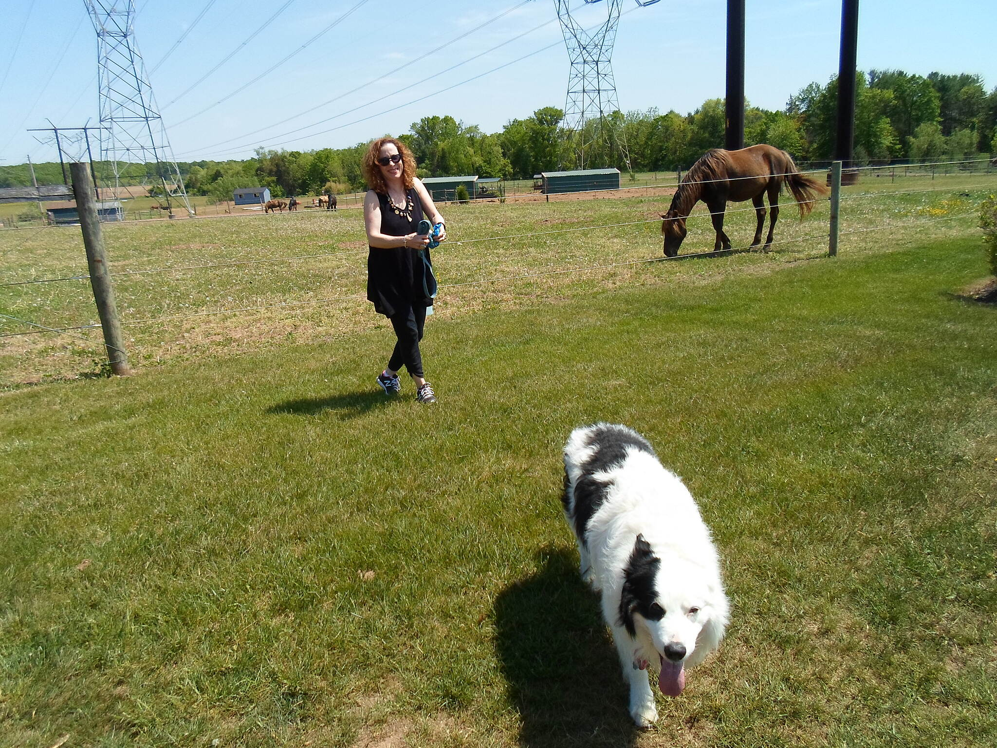 Skippack Trail Skippack Trail Another of the 'Fun E. Farm' women with her pet dog. Taken May 2015.