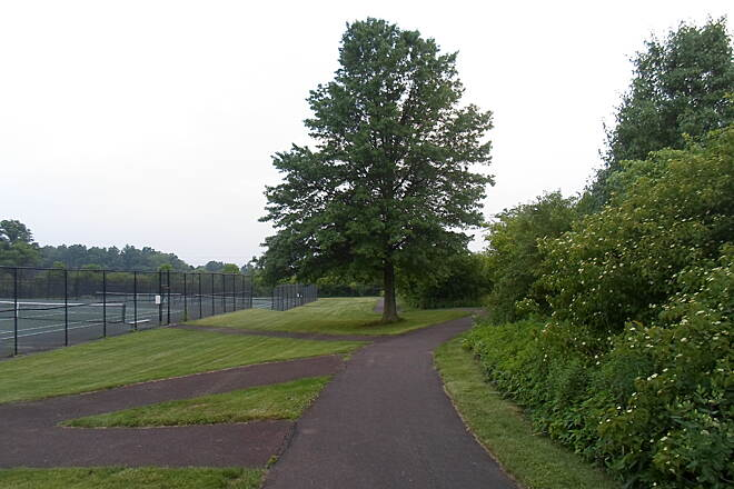 Skippack Trail Skippack Trail Passing tennis and volleyball courts (on the left) and a large tree in Palmer Park. Taken June 2015.