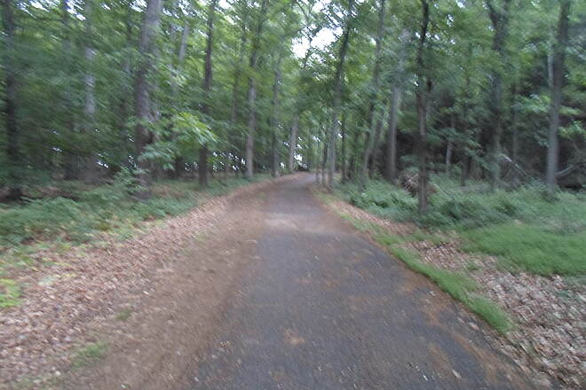 Skippack Trail Skippack Trail Looking west along the trail from the terminus at Thompson Road. Taken June 2015.