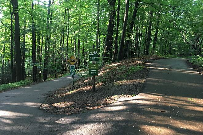 South Burlington Recreation Path On its west side, explore the forested settings of Farrell and Dorset Parks.  Photo by Kevin Belanger