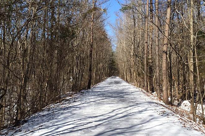 South Campus Rail Trail Snow and ice over the trail Early March of 2015