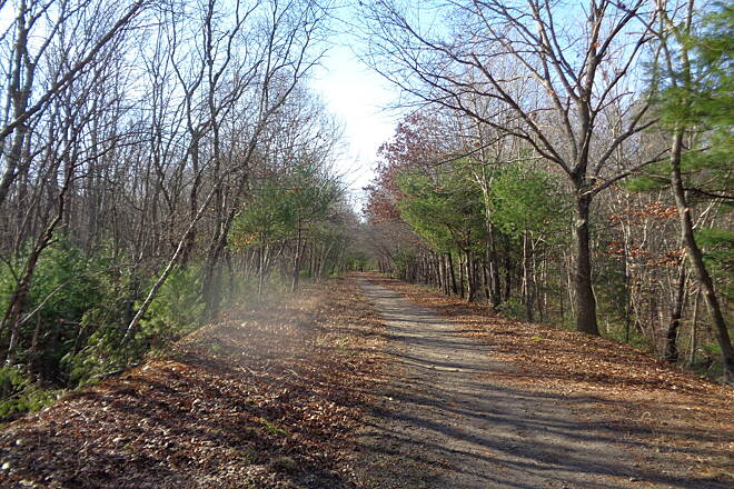 Southern New England Trunkline Trail West of Grove St., Franklin Trail looking west, just west of Grove St., Franklin on 1/6/16 after trail clearing.