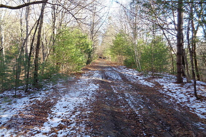 Southern New England Trunkline Trail Trail looking west at MP 1.0 Trail looking west on 1/6/16 at Milepost 1.0, Franklin, MA