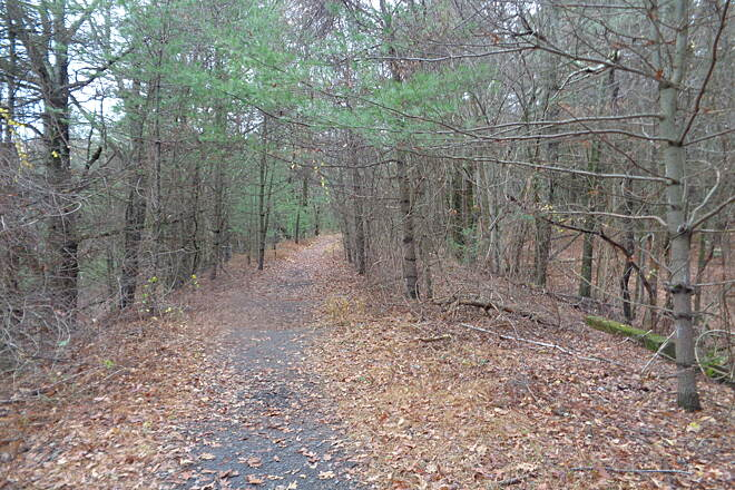 Southern New England Trunkline Trail View east near town line This is the view east near the Bellingham / Franklin town line on 11-16-16. Green object on right behind tree is a cattle underpass.