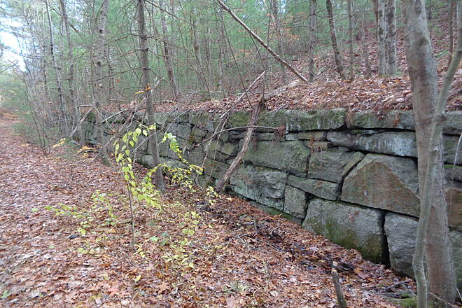 Southern New England Trunkline Trail Cut stone wall at Prospect St. Long cut stone wall on the south side of the grade both  sides of Prospect St. in Franklin 11/13/14.