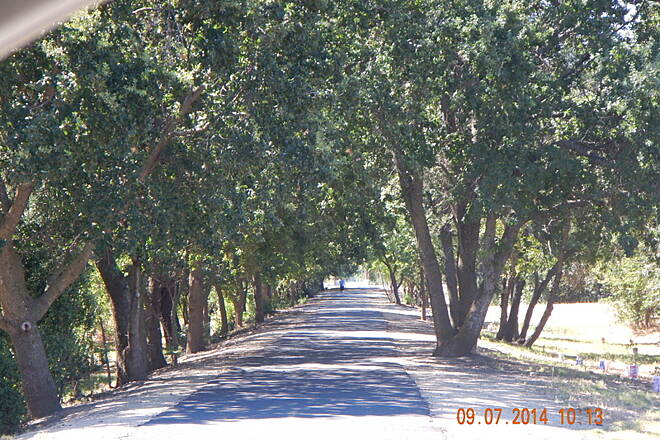 Southside Bikeway Vacaville Spur Bike Pat View to South from Marshall Rd 9 Jul 14