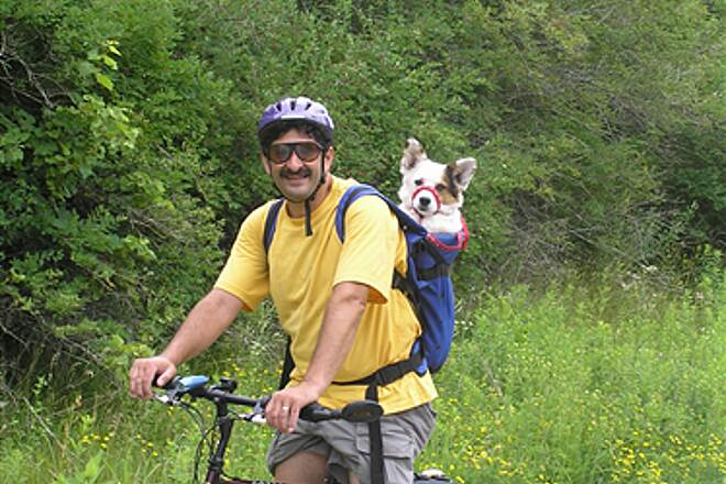 Southwest Commuter Path owner and dog Taking the dog for a ride, rail-trail style