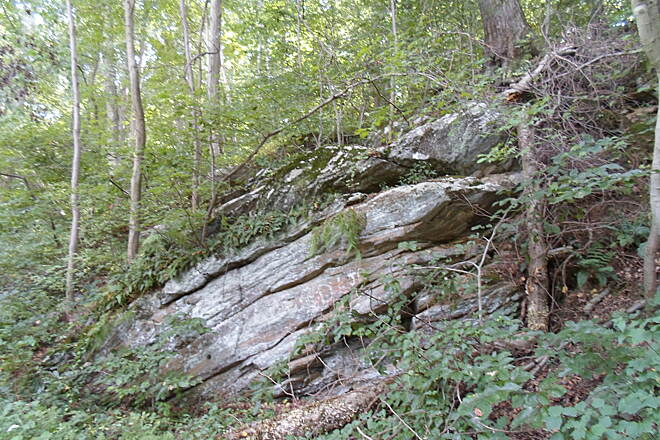 Springlawn Trail Springlawn Trail This rock outcropping is on the southeast section of the trail.