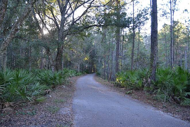 Starkey Wilderness Park Paved Trail The Starkey trail