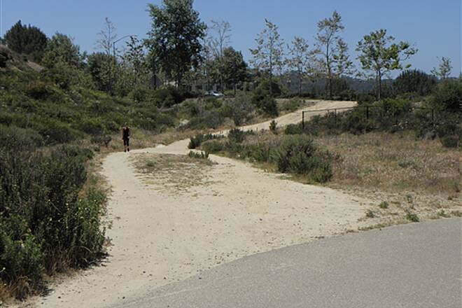 State Route 56 Bike Path  Access path to west bound El Camino Real is steep and soft. Most other access paths are paved.