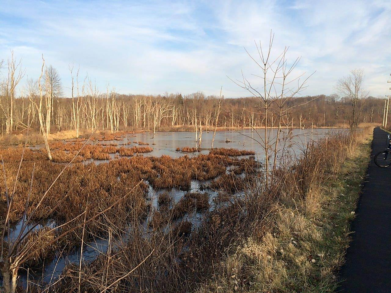 Stavich Bicycle Trail the Pond-Dec 2014 Pond next to the trail, December 2014