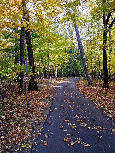 Steel Mill Trail Tranquility Path Beautiful Fall Day