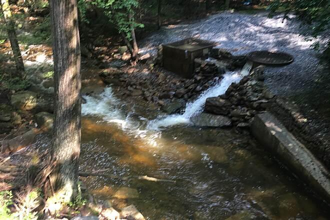 Stony Valley Railroad Grade | Pennsylvania Trails | TrailLink