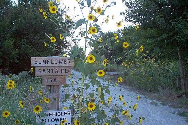 Sunflower Santa Fe Trail   Kansas Trails   TrailLink