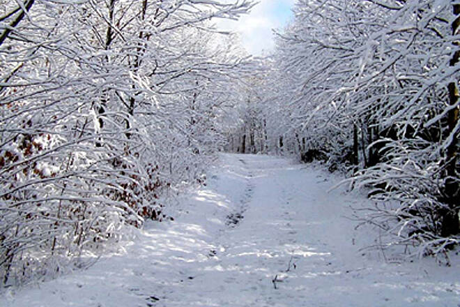 Sussex Branch Trail SBT in winter!